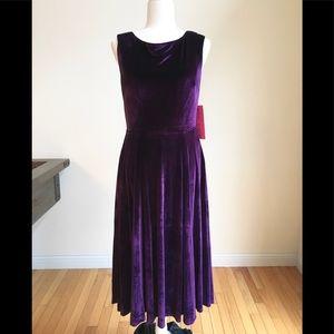 Incredible NWT Betsey Johnson velvet dress